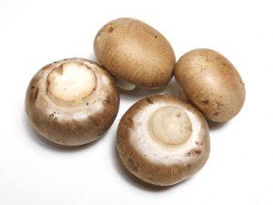 mushrooms-fresh-raw-1